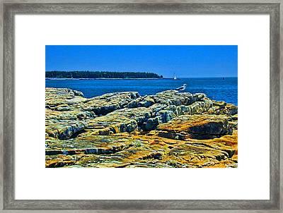 7310 - Bar Harbor Framed Print