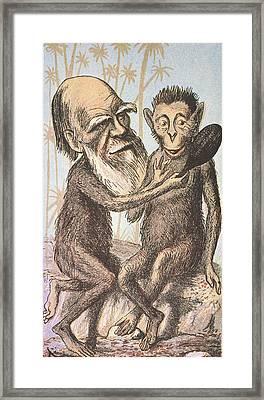 Charles Darwin (1809-1882) Framed Print by Granger