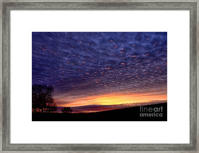 Dawn Of The Day Framed Print by Thomas R Fletcher