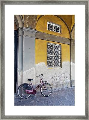 Europe, Italy, Lucca Framed Print
