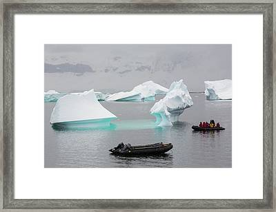 Icebergs Off Curverville Island Framed Print