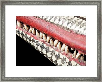 Ink Scrimshaw On Dolphin Skull Framed Print by Natural History Museum, London