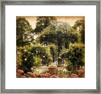 Rose Arbor Framed Print by Jessica Jenney
