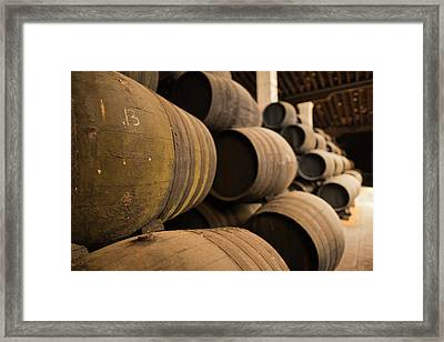 Spain, Andalucia Region, Cadiz Framed Print by Walter Bibikow