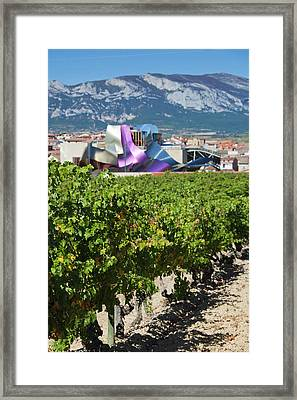 Spain, Basque Country Region, La Rioja Framed Print by Walter Bibikow