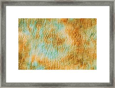 Textile Background Framed Print