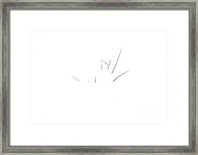 8 Twigs In The Snow Framed Print