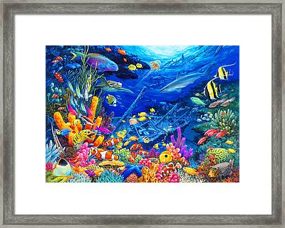Undersea Wonders Framed Print