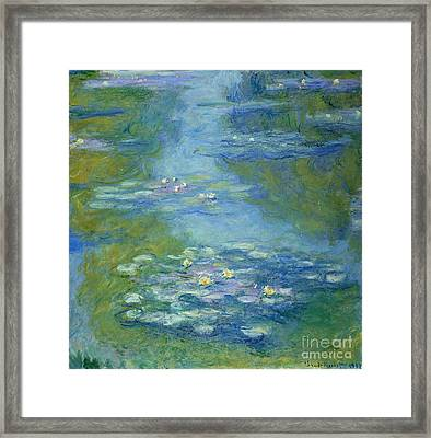 Waterlilies Framed Print