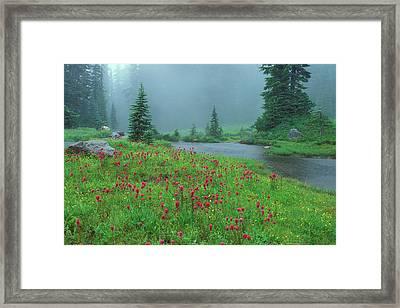 8925-0412 Framed Print