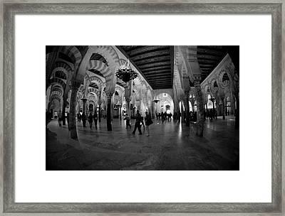 8mm Fisheye Framed Print