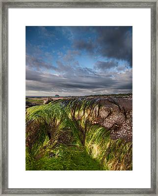 Bass Rock Framed Print by Keith Thorburn LRPS