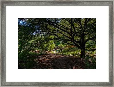 Duke Gardens Framed Print by Gene Hilton