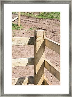 Fence Framed Print by Tom Gowanlock