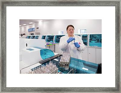 Haematology Laboratory Framed Print