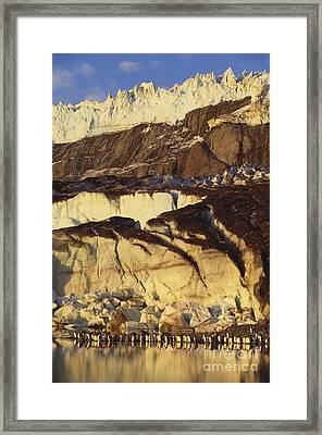 King Penguins Framed Print by Art Wolfe