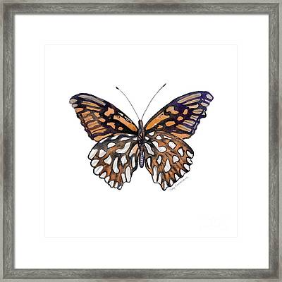 9 Mexican Silver Spot Butterfly Framed Print by Amy Kirkpatrick