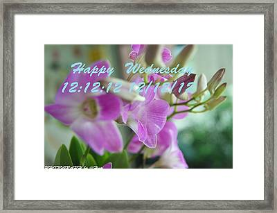 Orchid For You  Framed Print by Gornganogphatchara Kalapun