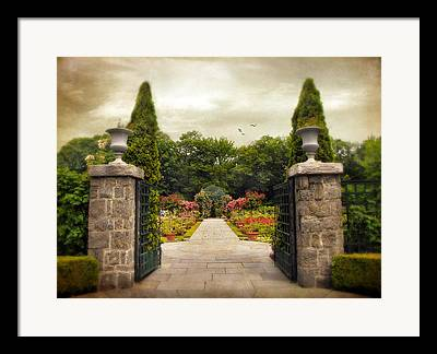 Stone Planter Framed Prints