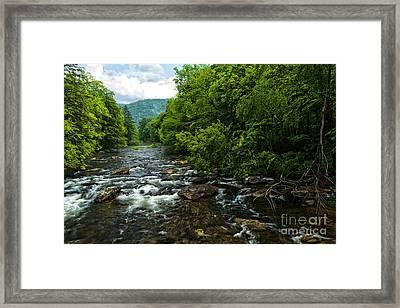Spring Along Cranberry River Framed Print
