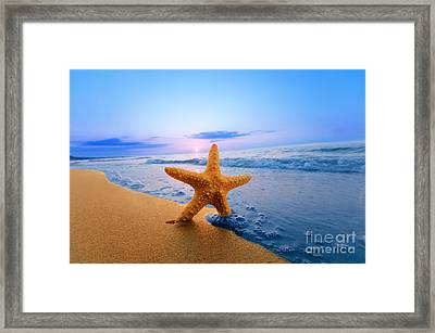 Starfish Framed Print by Michal Bednarek