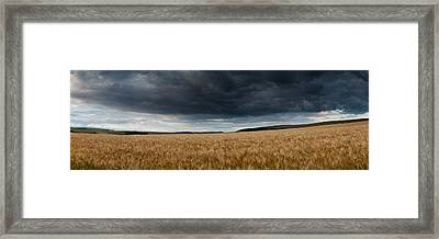 Stunning Countryside Landscape Wheat Field In Summer Sunset Framed Print by Matthew Gibson