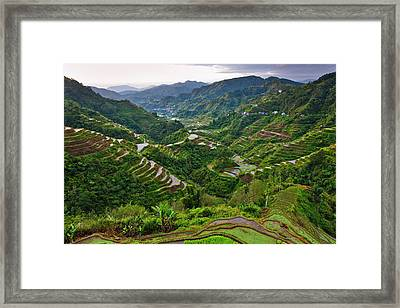 The Rice Terraces Of The Philippine Framed Print