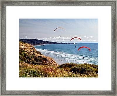 Usa, California, La Jolla Framed Print by Ann Collins