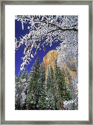 Usa, California, Yosemite National Park Framed Print