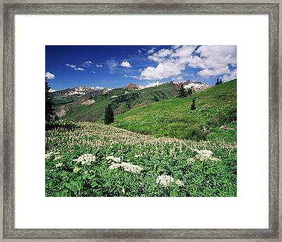 Usa, Colorado, Gunnison National Framed Print by Adam Jones