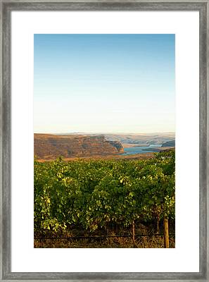 Usa, Washington, Columbia Valley Framed Print