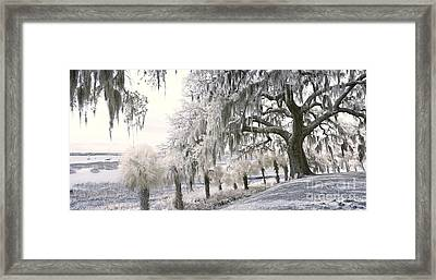 90 Degree Infrared Panorama Framed Print