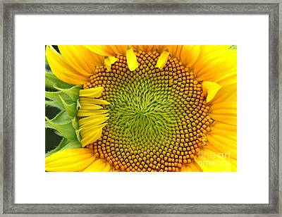 90 Percent Framed Print