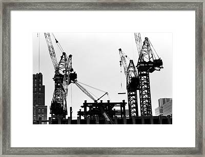 #96 Kangaroo Crane Moving Up Framed Print