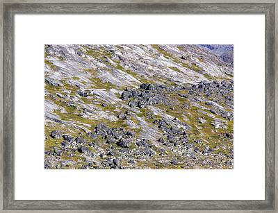 A 9000 Year Old Moraine Framed Print