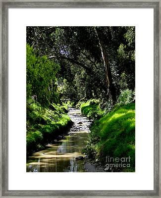 A Babbling Brook Framed Print by Al Bourassa