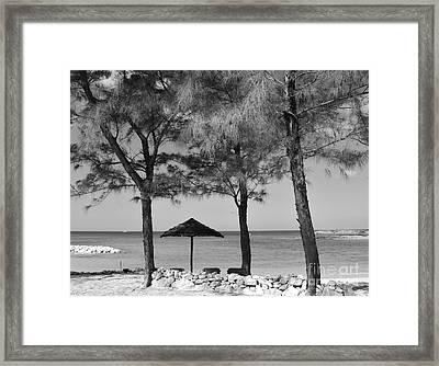 A Bahamas Scene In Black And White Framed Print