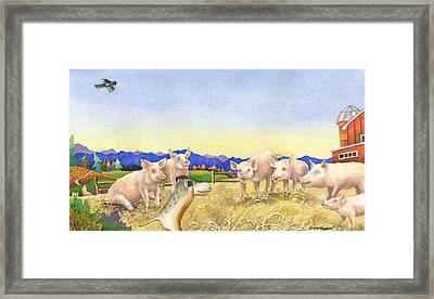 A Barnyard Of Pigs Framed Print