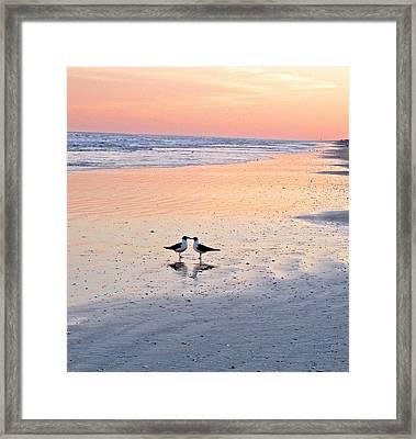 A Beach Romance Framed Print