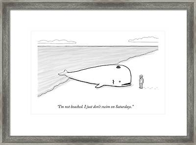 A Beached Whale Wears A Hasidic Rabbi Hat Framed Print by Paul Noth