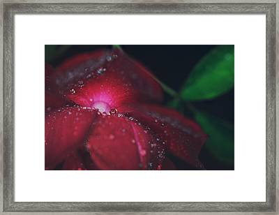 A Beacon Of Light Framed Print