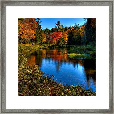 A Beautiful Autumn Day On The Moose River Framed Print by David Patterson