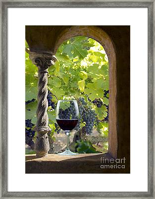 A Beautiful Day At The Vineyard Framed Print