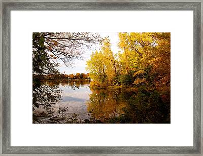 A Beautiful Day Framed Print by Jocelyne Choquette