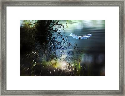 A Beautiful Dream Framed Print