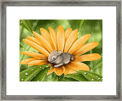A Beautiful Flower Framed Print