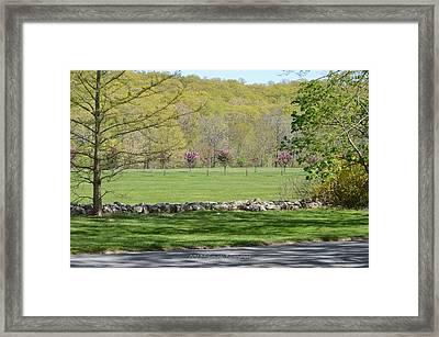 A Beautiful Landscape Framed Print by Sonali Gangane