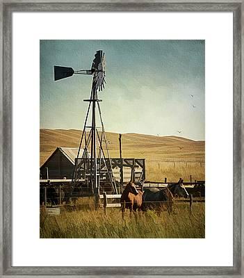 A Beautiful Nebraska Sandhills Farm Framed Print by Priscilla Burgers
