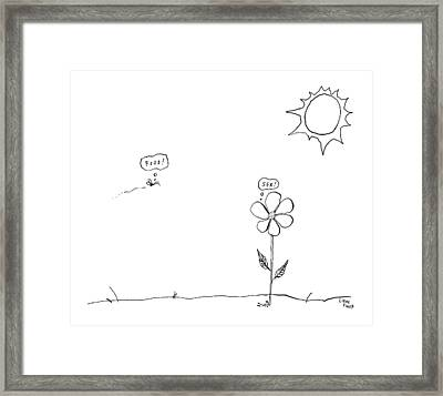 A Bee Thinking  Food! And A Flower Thinking  Sex! Framed Print