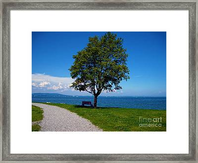 A Bench At The Lake Of Konstanz Framed Print